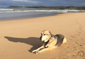 Reg on the beach